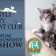 Saintly City Cat Club, Inc. 41st Annual Championship and Household Pet Cat Show