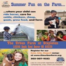 Summer Fun On The Farm Camps