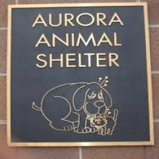 Shelter & Support for Homeless Pets