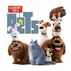 Movie in the Park: Secret Life of Pets