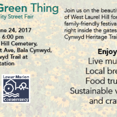 It's a Green Thing! Sustainability Street Fair @ West Laurel Hill