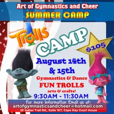 Trolls Themed Gymnastics & Dance Camp