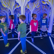 The Franklin Institute, A Mirror Maze: Numbers in Nature