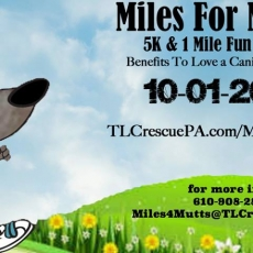 Miles For Mutts