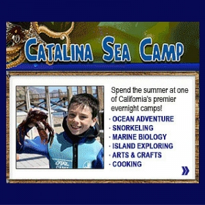 Catalina Sea Camp: Summer Camp