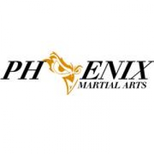 Nineveh as well Phoenix Martial Arts as well Team Molly Shirt moreover Our Event Sponsors as well Vandammes. on syracuse ny website