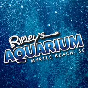 Ripley's Aquarium of Myrtle Beach: Summer Kid's Club