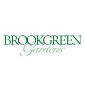 Brookgreen Gardens: Camp Brookgreen