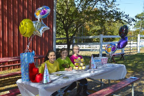Celebrate your child's Birthday at the Stables!